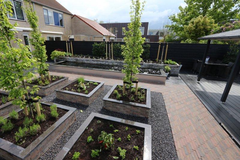 Renovatie achtertuin oude tonge tuin ontwerp for Strakke kleine tuin